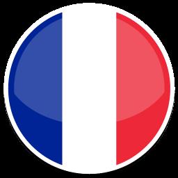 drapeau français pandaris
